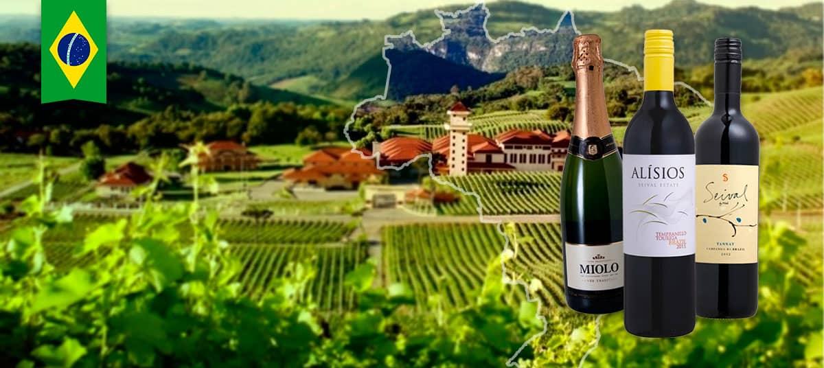 01-brazil-a-bottle-of-wine-miolo