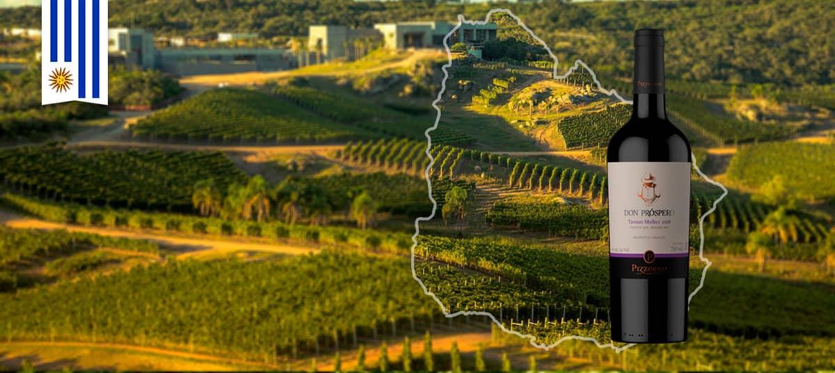 02-uruguay-pizzorno-wines