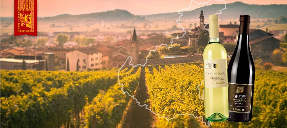 09-italie-v-n-tie-wine-lenotti
