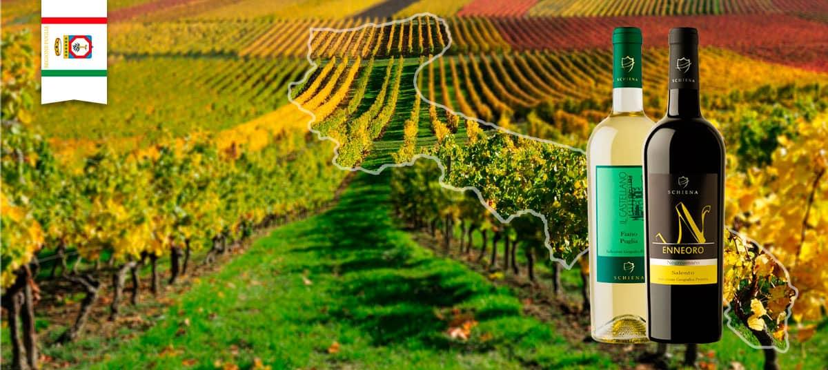 11-italie-pouilles-wines-schiena